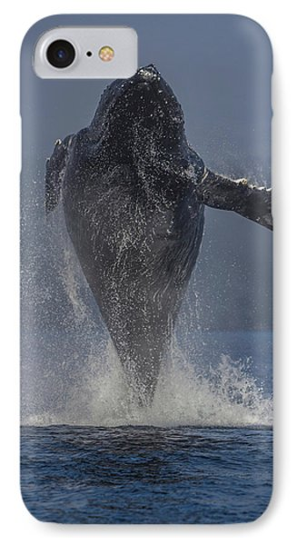 Humpback Whale Breaching In Chatham Strait IPhone Case by Wild Montana Images