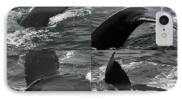 Humpback Whale Fluke Montage IPhone Case