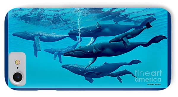 Humpback Whale Group IPhone Case by Corey Ford