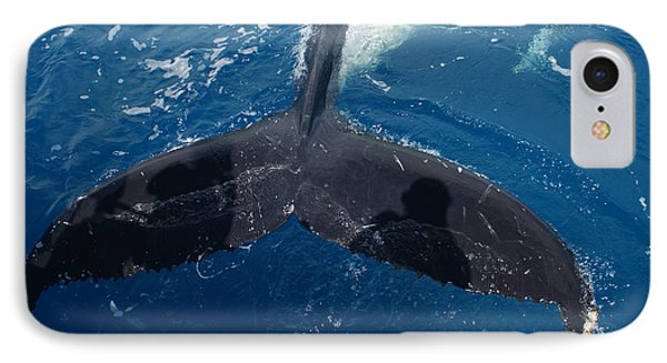 Humpback Whale Tail With Human Shadows IPhone Case