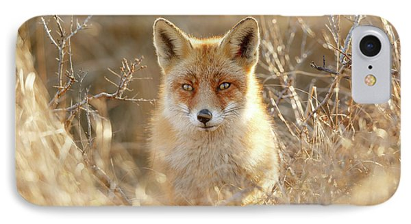 Hungry Eyes - Red Fox In The Bushes IPhone Case by Roeselien Raimond