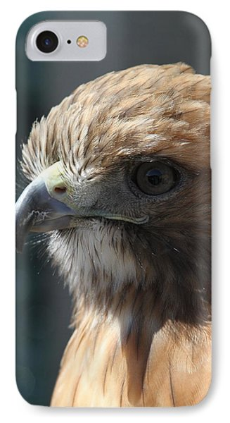 IPhone Case featuring the photograph Hunter's Spirit by Laddie Halupa