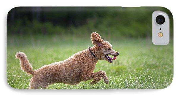 Hunting Dog IPhone Case