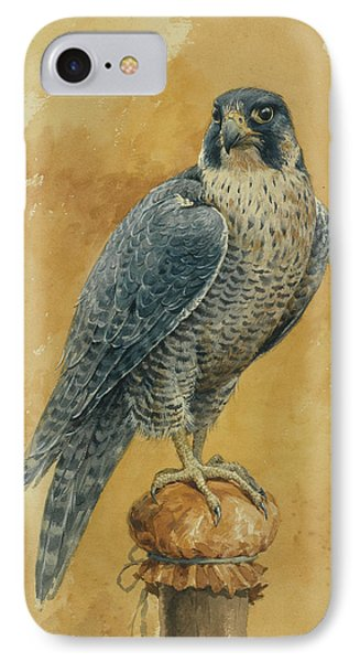 Hunting Falcon IPhone Case