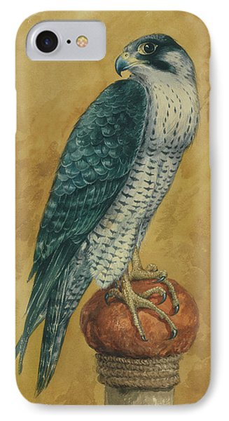 Hunting Hawk IPhone Case