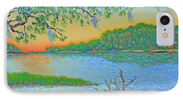IPhone Case featuring the painting Hunting Island Lagoon 2 by Dwain Ray