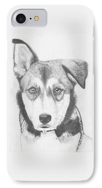 Husky Shepherd Cross IPhone Case by David Smith
