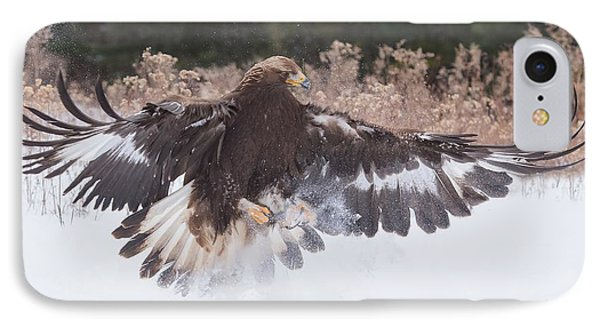 Hunting In The Snow IPhone Case by CR Courson