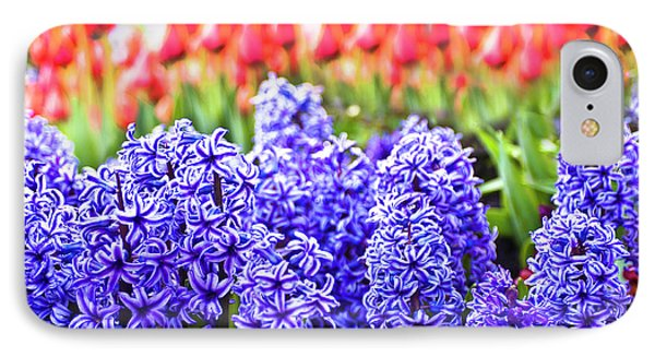 Hyacinth In Bloom Phone Case by Tamyra Ayles