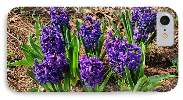 Hyacinth IPhone Case by Rick Friedle