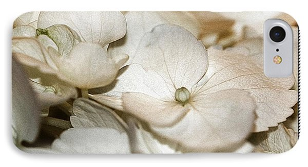 Hydrangea Blossom Framed IPhone Case by Andrea Lazar