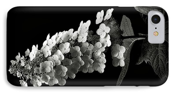 Hydrangea In Black And White IPhone Case by Endre Balogh