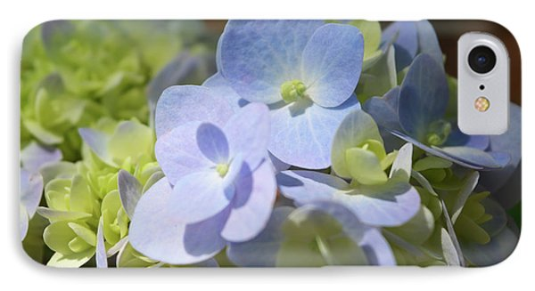 Hydrangea Petals IPhone Case by Aimee L Maher Photography and Art Visit ALMGallerydotcom