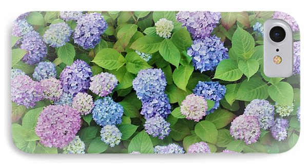 Hydrangea Play IPhone Case by Ann Johndro-Collins
