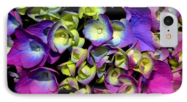 IPhone Case featuring the photograph Hydrangea by Vivian Krug Cotton