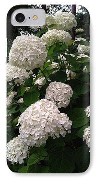IPhone Case featuring the photograph Hydrangeas by Ferrel Cordle