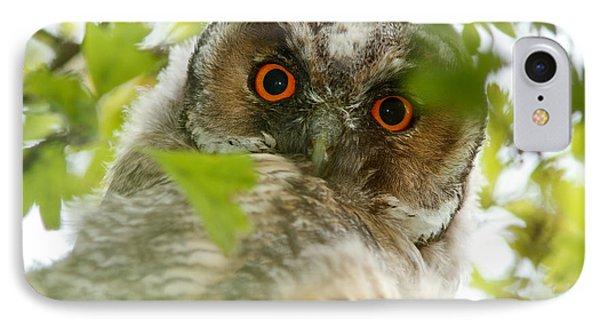 Hypnoteyes - Long-eared Owl IPhone Case by Roeselien Raimond