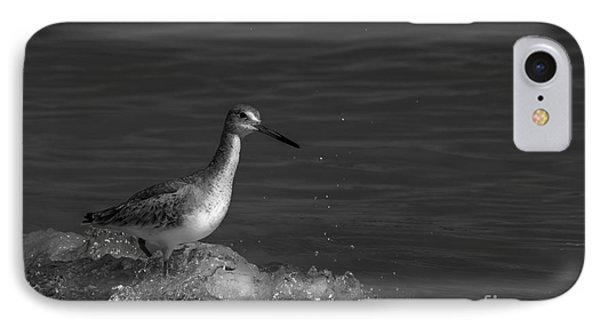 Sandpiper iPhone 7 Case - I Can Make It - Bw by Marvin Spates