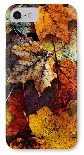 I Love Fall 2 Phone Case by Joanne Coyle