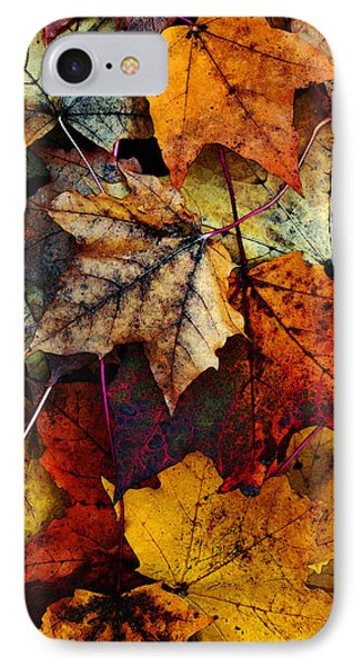 I Love Fall 2 IPhone 7 Case by Joanne Coyle