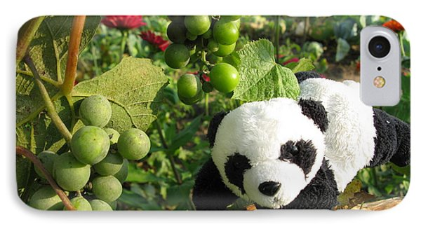 IPhone Case featuring the photograph I Love Grapes B by Ausra Huntington nee Paulauskaite