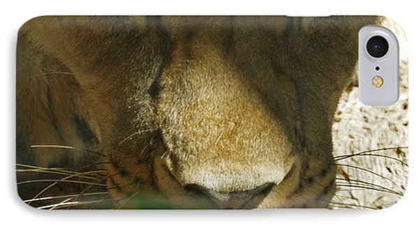 I See You 2 Phone Case by Ernie Echols