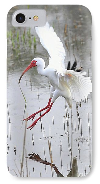 Ibis Soft Water Landing IPhone 7 Case by Carol Groenen