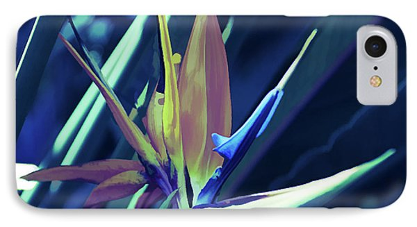 IPhone Case featuring the photograph Ice Cold Bird Of Paradise by Aimee L Maher Photography and Art Visit ALMGallerydotcom