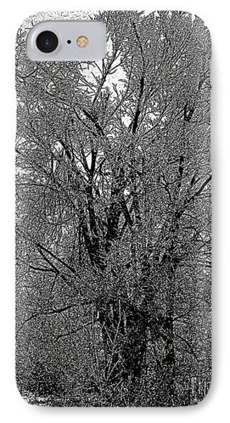 Iced Tree IPhone Case by Craig Walters