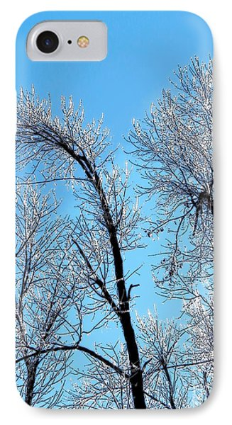Iced Trees IPhone Case by Craig Walters