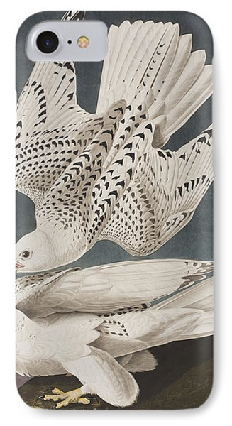 Iceland Falcon Or Jer Falcon IPhone Case by John James Audubon