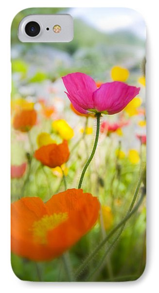 Iceland Poppies IPhone Case by Silke Magino