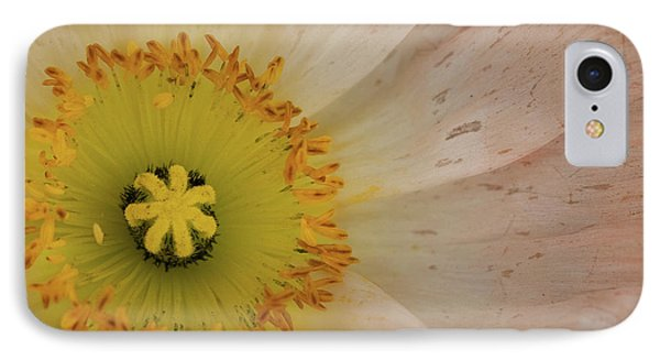 IPhone Case featuring the photograph Icelandic Poppy by Roger Mullenhour