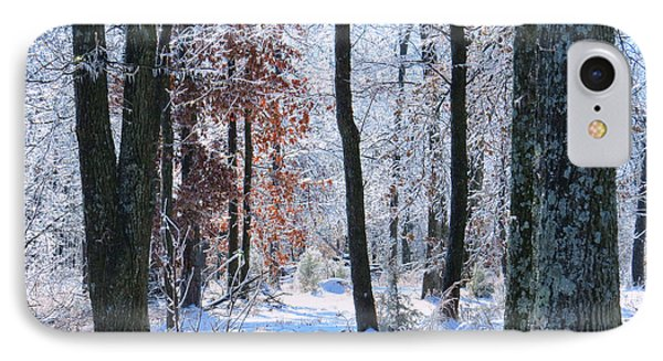 Icey Forest 1 IPhone Case by Craig Walters