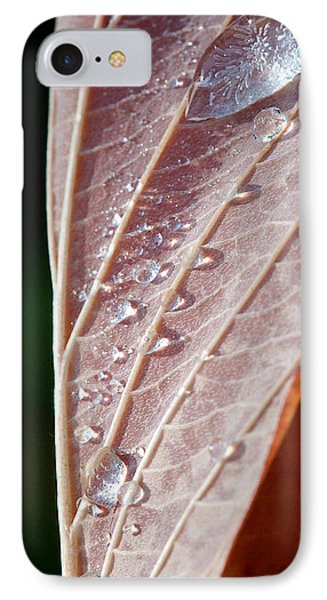 Icy Fall Morning Phone Case by Lisa Knechtel