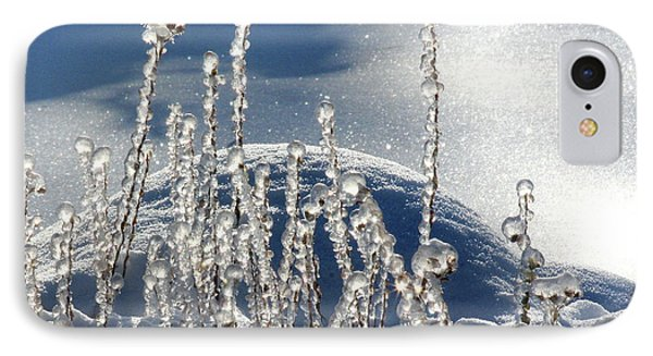 IPhone Case featuring the photograph Icy World by Doris Potter