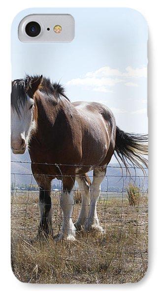 Idaho Work Horse 2 Phone Case by Cynthia Powell