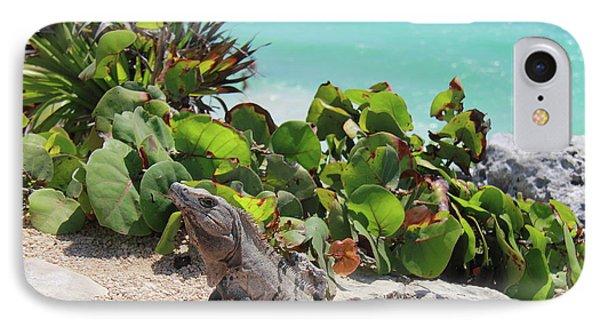 Iguana At Tulum IPhone Case by Roupen  Baker