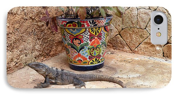 IPhone Case featuring the photograph Iguana by Dianne Levy