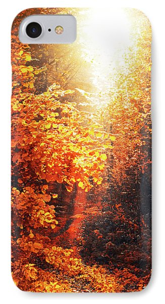 Illuminated Forest IPhone Case by Wim Lanclus
