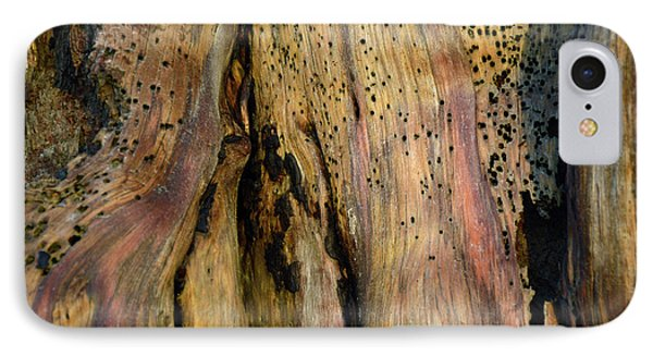 Illuminated Stump 02 IPhone Case by Bruce Gourley
