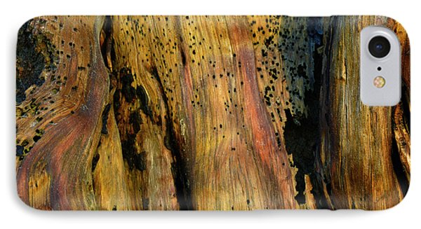 Illuminated Stump IPhone Case by Bruce Gourley