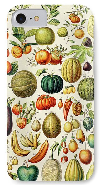 Illustration Of Fruit IPhone Case by Adolphe Philippe Millot