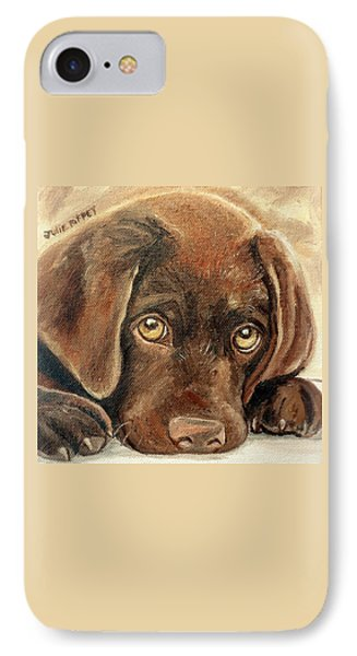 I'm Sorry - Chocolate Lab Puppy IPhone Case