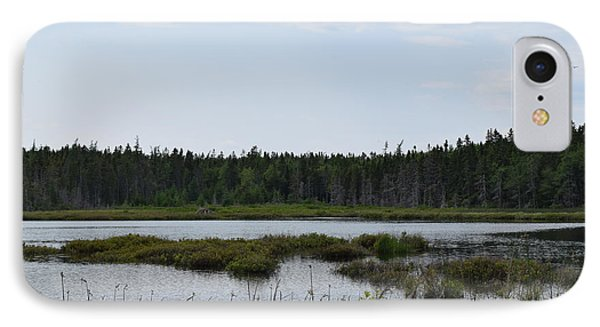 Images From Mt. Desert Island Maine 1 IPhone Case