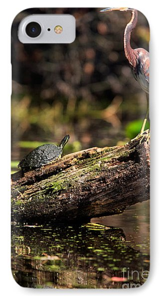 Immature Tri-colored Heron And Peninsula Cooter Turtle Phone Case by Matt Suess