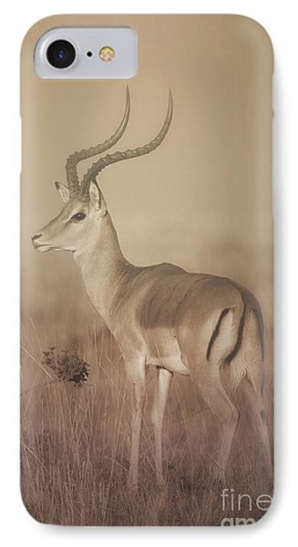 IPhone Case featuring the photograph Impala At Dawn by Chris Scroggins
