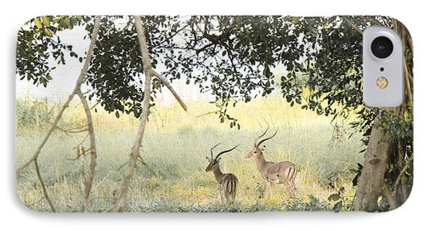 Impala IPhone Case by Patrick Kain