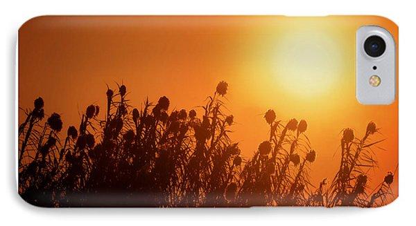 Impalila Island Sunset No. 3 IPhone Case by Joe Bonita