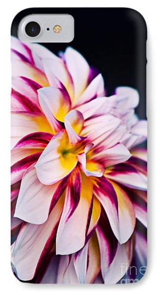 Impression D'un Dahlia IPhone Case by Angela Doelling AD DESIGN Photo and PhotoArt